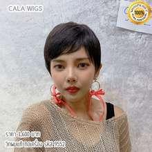 CALA WIGS CALAWIGS-2020 วิกผมแท้ ทอเครื่อง รหัส 9552